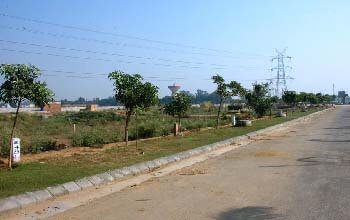 Industrial Plots in Bahadurgarh