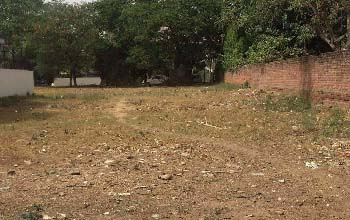 1000 Sq Yard Plot For Sale in DLF Phase 1