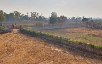 Agriculture Land For Sale Near KMP Expressway Gurgaon